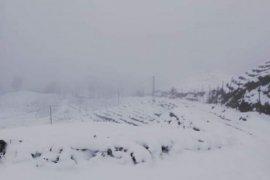 Mart 9'u karlı geçti bakalım Abrul beşinde ne olacak?