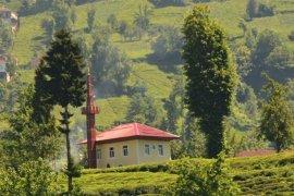 Adım adım Kalkandere Adalar mahallesi