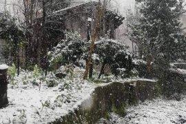Kalkandere'de kar yağışı başladı
