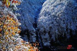 Ayder Yaylasından muhteşem manzaralar