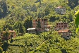 Adım adım Kalkandere Dülgerli köyü