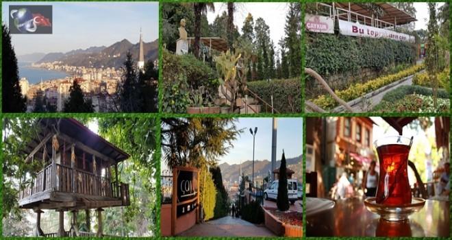 Ziraat ÇAYKUR Botanik Çay Bahçesi, Rize'nin Dünya'ya Açılan Kapısı