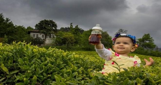 En Güzel Çay İçen Rizeli,Fotoğraf Yarışmasının Kazananları Belli Oldu