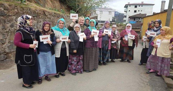 AK Parti Kadın Kolları Referandum Çalışmaları