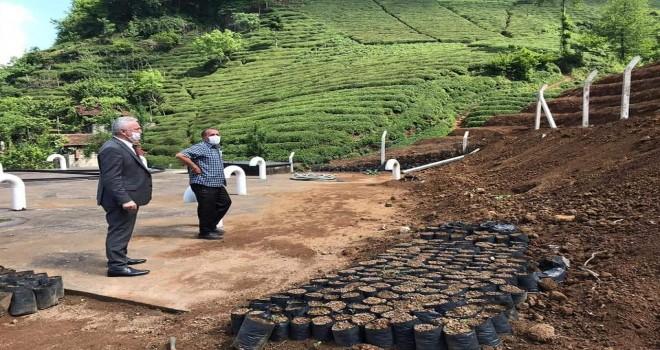 Kalkandere belediye başkanı yol çalışmaları devam ediyor