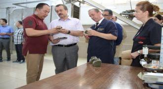 """Rize Çayı İle Birlikte """"DİDİ"""" de Çin Yolunda"""