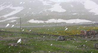 Rize'de Haziranın Ortasında Kar Yağdı