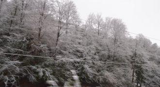 Rize'de Kar Yağışı