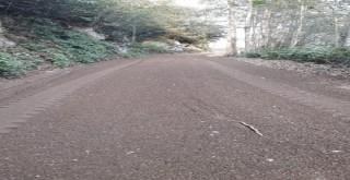 Kalkandere Köylerı Yol Bakım Çalışmaları