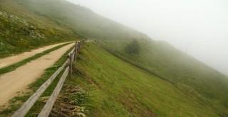 Yeşil Yola Neden Karşı Değilim !..
