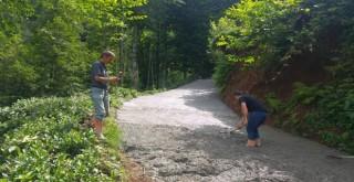 Kalkandere Taşçilar Mahallesi Yol Betonlama